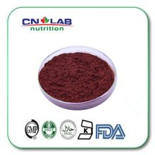 Natural lycopene powder 1% - 10% Tomato Extract, favourable lycopene price