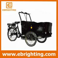 reasonable price tricycle 3 wheel bike cargo 200cc air-cooling and for family