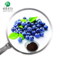 Organic Blueberry Powder/blueberry extract powder with GMP TUV Rheinland certificate
