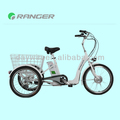 new style 36V 10AH Li-ion Rear Differential Cargo e-bike with Pedal (DW101)