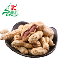 Wholesale cheap price edible raw shandong shelled peanuts with big kernel