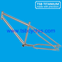 bicycle frame beach cruiser bicycle TSB-ZJS0901