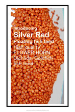 > 40 % High Protein Flower horn fish feed with natural ingredients and color enhancing formula - Value for money