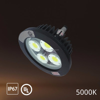 80W 5000K Pendant Hazardous Explosion proof Lights