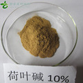 Natural Lotus Leaf Extract 1%2% Nuciferine,CAS No.:475-83-2