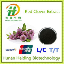 TOP Quality Red Clover Extract,Red clover extract powder,2.5~40% Isoflavones