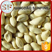 Peeled raw blanched peanuts prices