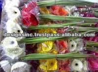 Export wholesale Fresh cut Flowers/Roses/Gerberas/Jasmine/Decorative Flowers