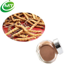 Best price 7%Cordycepin Cordyceps sinensis Extract powder