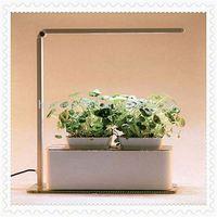Flower lamp of indoor lights