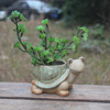 New design tortoise ceramic animal shape garden planter