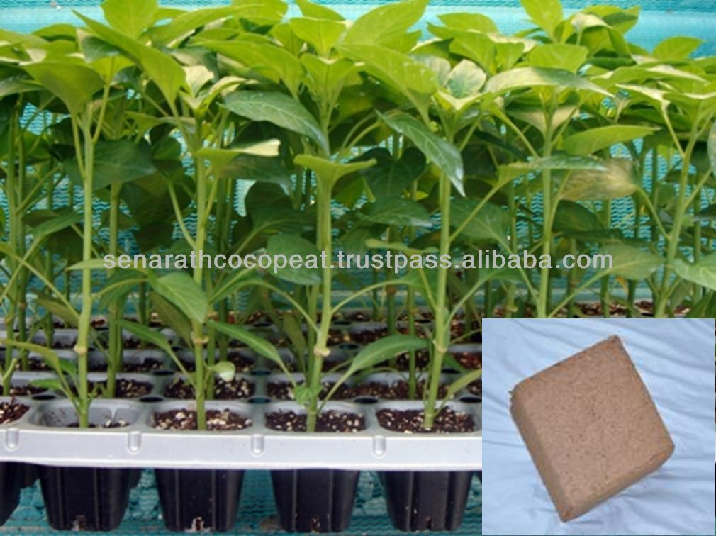 COCO PEAT for Farms (Flowers,Vegetable, Fruits)