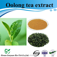 Pure natural oolong tea extract with tea polyphenol powder 50%