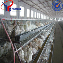 A type cool galvanized broiler meat cage