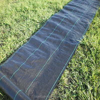 high quality pp ground cover for agriculture
