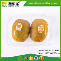 Clear Disposable Plastic Fresh Fruit Packing