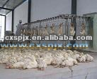 poultry moving machine after slaughtering