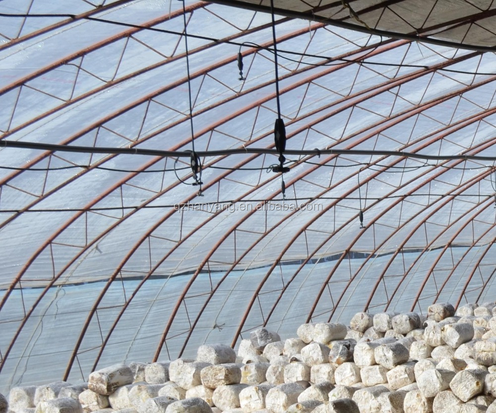 plastic film greenhouse for mushroom planting
