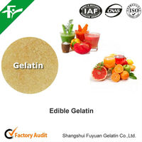 High Quality Health Food Ingredient Gelatin