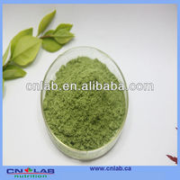 100% natural high qulity celery juice powder