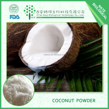 Health Products Instant Coconut Water Powder 10:1
