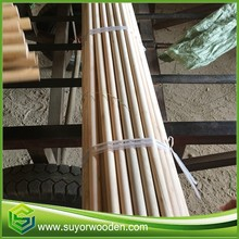 Eucalyptus Natural Wooden Broom Stick Paint Brush Straight Wooden Mop Handle