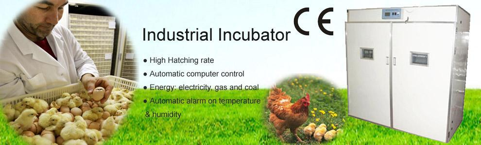 full automatic used chicken egg incubator for sale