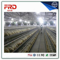 FRD-layer poultry cages/chicken layer cage/chicken egg layer cages