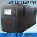 Customized silent 200 kw wood fire generator price