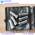 2018 Hot Sale Tungsten Carbide Punch and Dies for Installing in the Stamping Die
