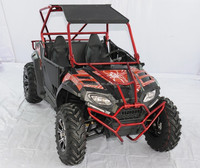 China 2 wheel drive 250cc 2 seat racing/hunting/sports cvt transmission dune buggy