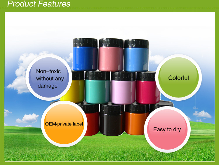 Christmas Gifts!Acrylic spray paint/ Friendly Acrylic paint set for kids drawing