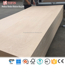 Construction company 1220x2440mm plywood 19mm , thick plywood