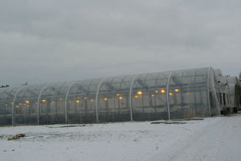 ETFE FOR GREENHOUSE COVERING