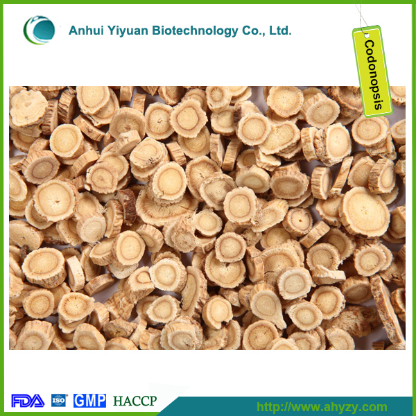 High quality Dry Codonopsis Pilosulae (Dang shen)