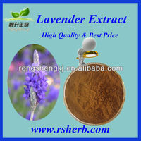 High Quality Natural Lavender Extract