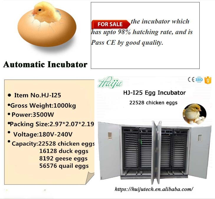 deduct price! capacity 22528 chicken eggs industrial egg incubator HJ-I25