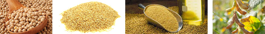 soybean meal-grits