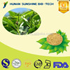 Manufacturer High quality L-Theanine 98% Green Tea Extract