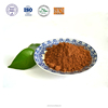 high quality natural cocoa powder fair trade raw cacao powder