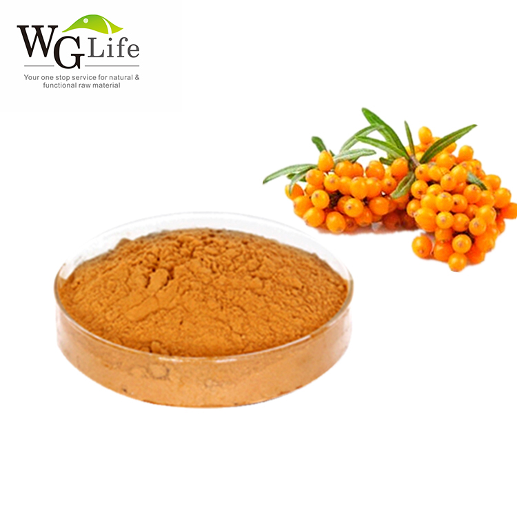 Free sample pure seabuckthorn extract pharmaceutical sea buckthorn organic powder