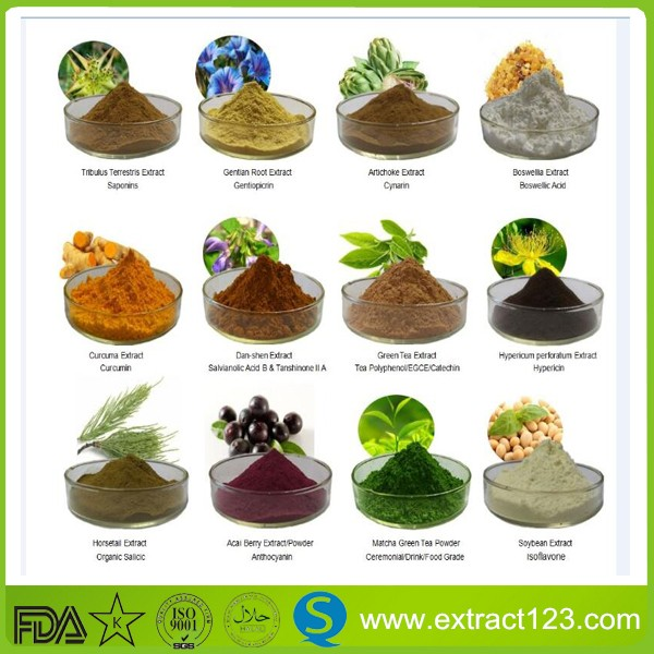 Powder Form Lotus Leaf Extract 2% Nuciferine