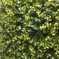 JS Great Value Boxwood Roll On