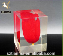 Perspex cube with flower model inside