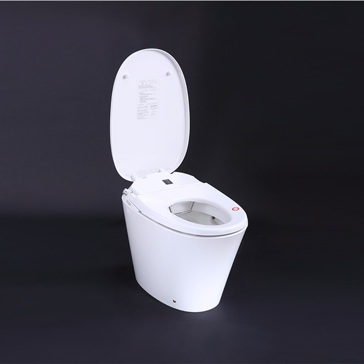 new western toilet commode price