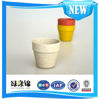 China's factory direct new environmentally degradable plant fiber gardon pot