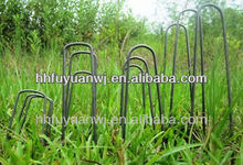 hot-dipped galvanized U-shaped landscape staple for garden