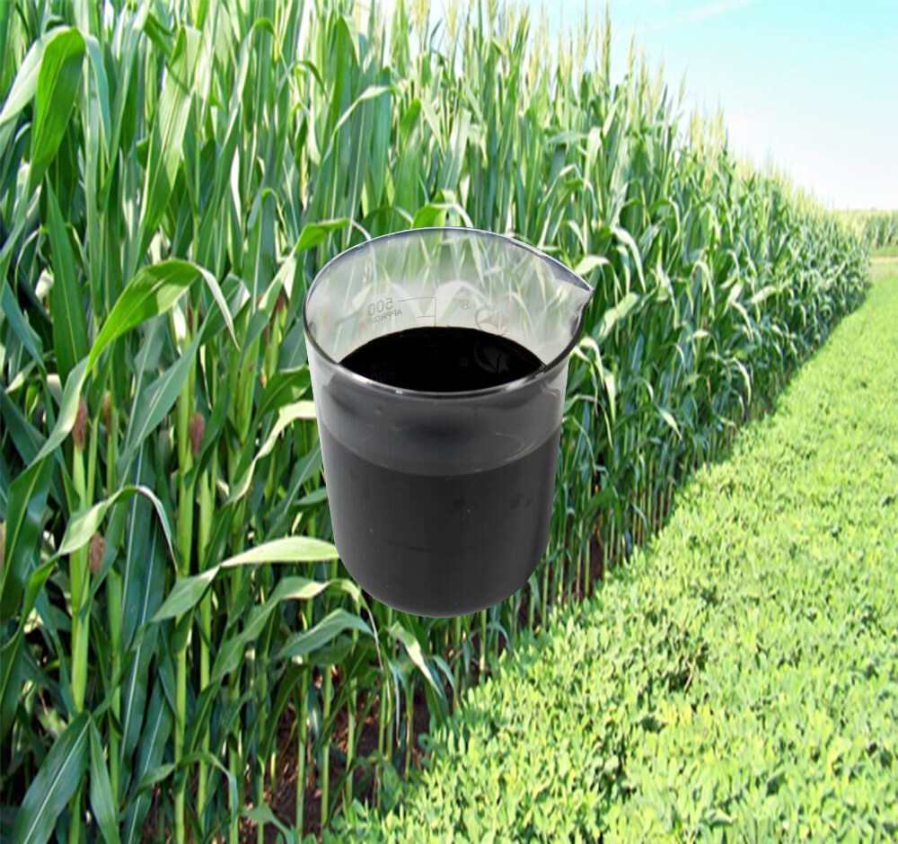 Bio fertilizer liquid type with humic trace element for plant fertilizer