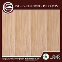 green building material eucaliptus furniture plywood for plywood door design