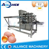 /product-detail/small-capacity-egg-breaking-machine-for-getting-whole-liquid-egg-60571603835.html